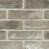 EFS Collection 1-02 - Декоративная фасадная плитка, м.кв., РБ