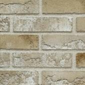 EFS Collection 1-15 - Декоративная фасадная плитка, м.кв., РБ