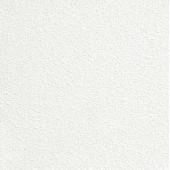 Плита потолочная AMF 60*60 LAGUNA VT 15, 1уп=5.04м2, Германия, цена за м2