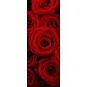 GreenBerry декоративное панно, 013 (Розы), размер 103 * 270 см, 1 л.