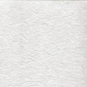 Обои Палитра флизелиновые под окраску из вспененного винила / Home Colour 426-01, размер 1,06 * 25