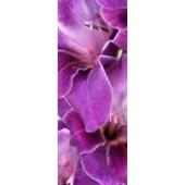 GreenBerry декоративное панно, 001 (Виолет), размер 103 * 270 см, 1 л.
